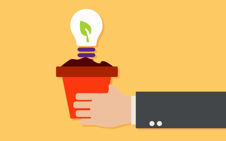 Inovação verde: empresas apostam em negócios sustentáveis