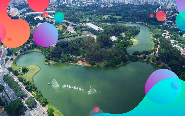 Despoluição dos lagos do Ibirapuera será feita com plantas filtrantes nativas