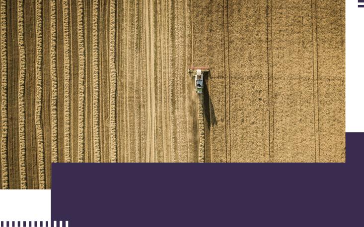 Safra agrícola recorde contribui para a queda da inflação