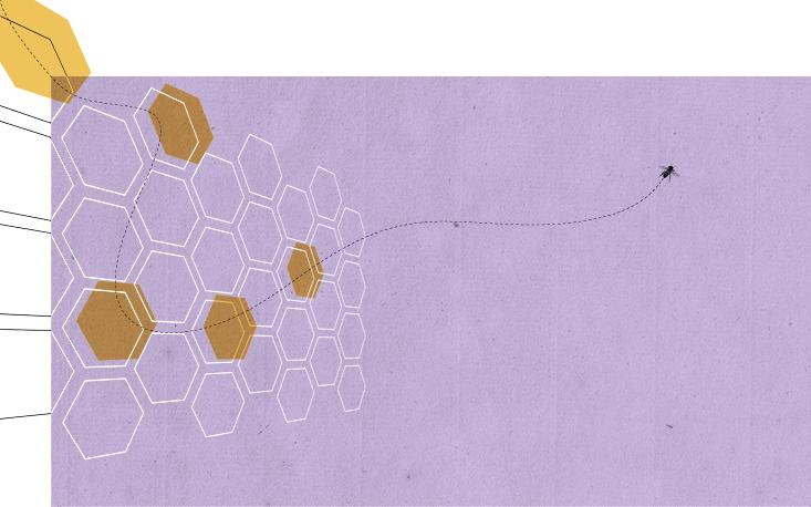 Rodada de negócios reúne empresários da apicultura brasileira na Argentina em março