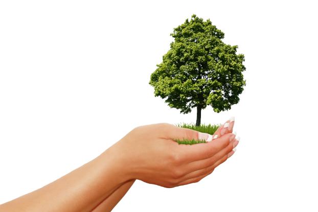 Em março, Senac Jabaquara realiza palestras sobre sustentabilidade