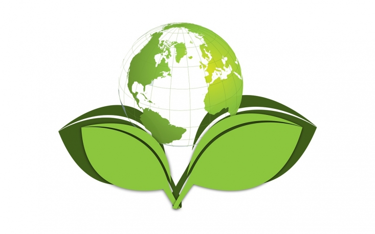 Resultado de imagem para desenvolvimento sustentavel