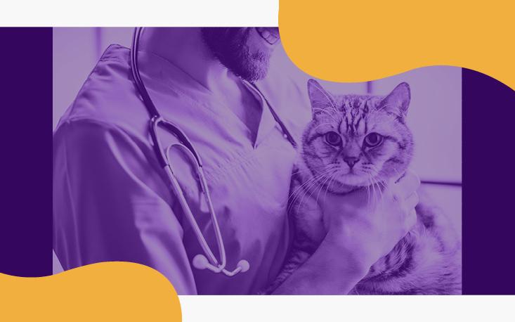 Sebrae Aprimora, voltado ao ramo pet e veterinário, tem apoio da FecomercioSP